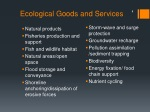 ecological goods and services