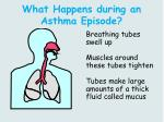 what happens during an asthma episode
