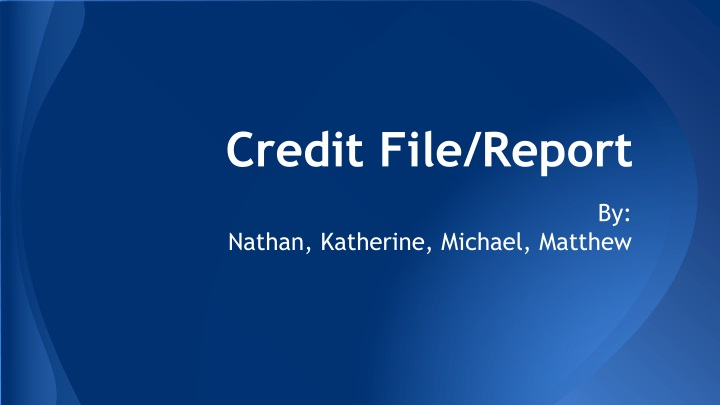 credit file report n.