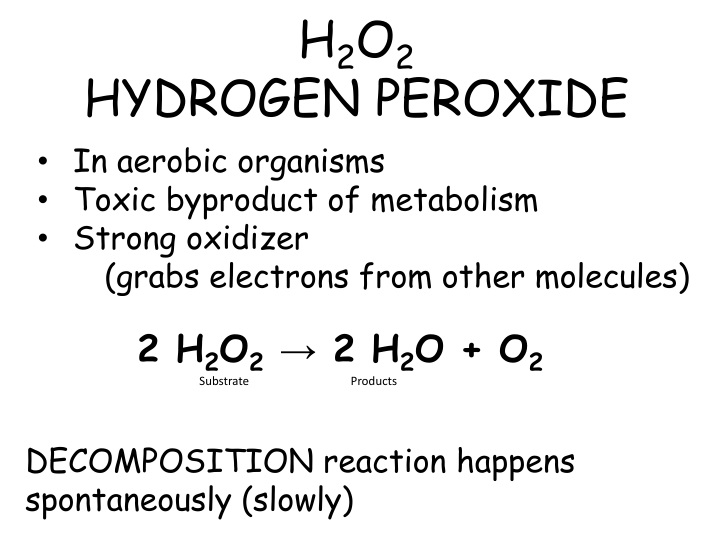 reaction against hydrogen peroxide essay Hydrogen peroxide essay sample the whole doc is available only for registered users open doc in my experiment hydrogen peroxide is being used as a reactant with the potato, with an unstable structure the hydrogen peroxide will be changed after the reaction with a substance called.