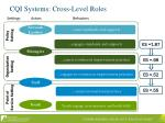 cqi systems cross level roles1