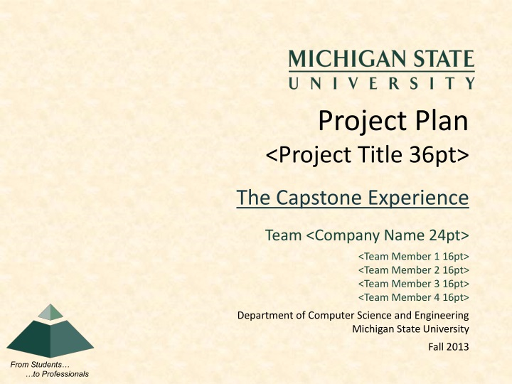 Project plan project title 36pt