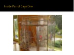 inside parrot cage one