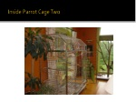 inside parrot cage two