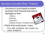 business insurable risks property