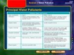 principal water pollutants