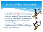 team member expectations