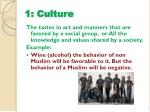 1 culture