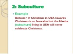 2 subculture