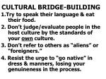 cultural bridge building