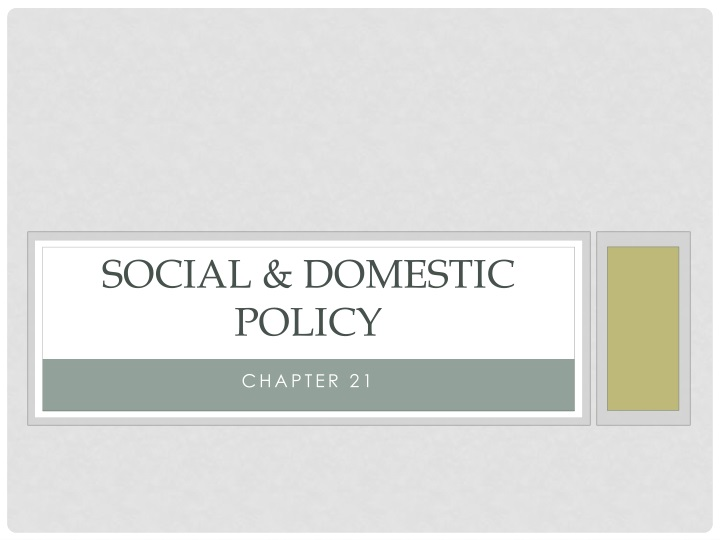 social domestic policy