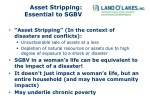 asset stripping essential to sgbv