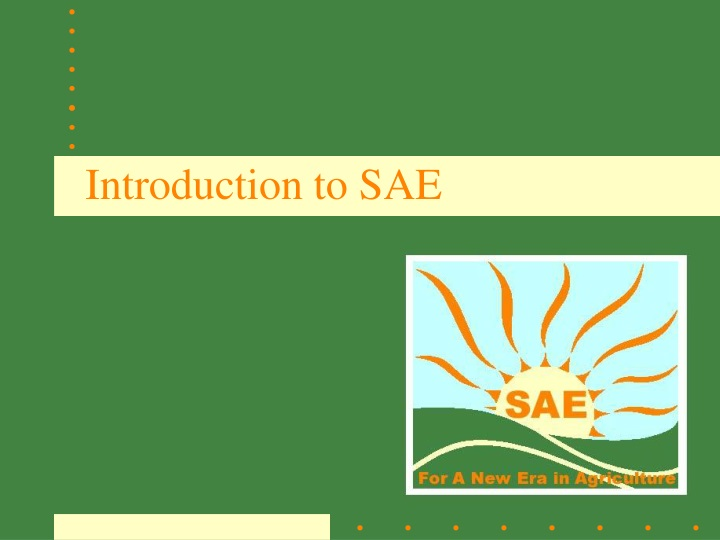 introduction to sae n.