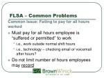 flsa common problems