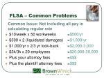 flsa common problems3