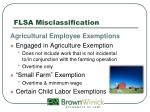 flsa misclassification15