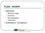 flsa scope