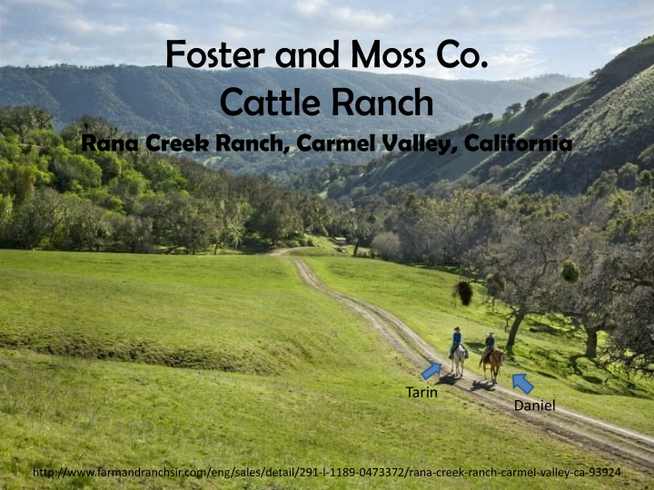 foster and moss co cattle ranch n.