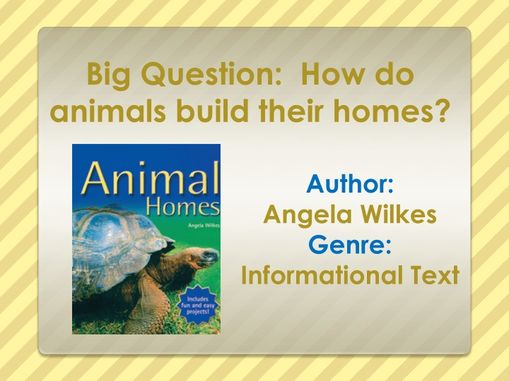 Big question how do animals build their homes