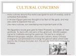 cultural concerns