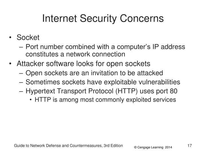 Internet Security Concerns