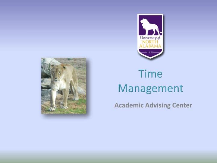 time management n.