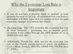 why the economic loss rule is important