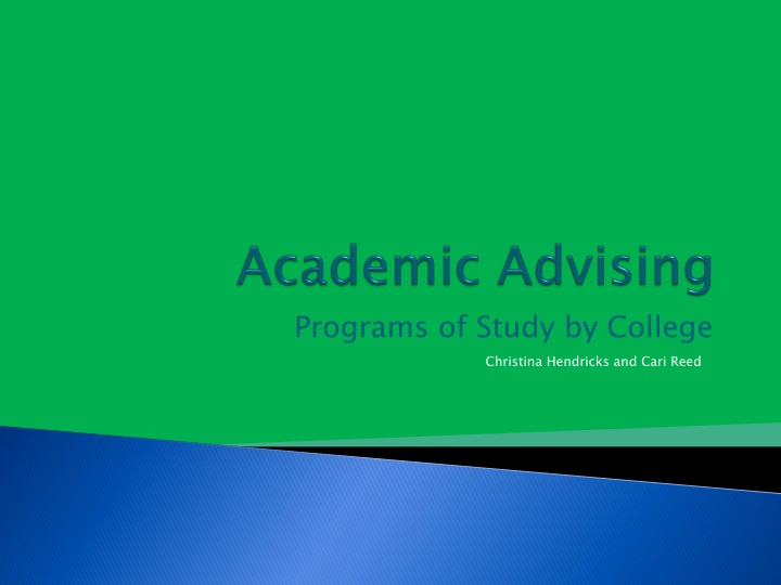 academic advising n.