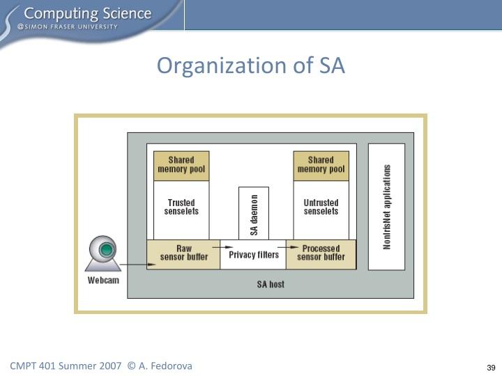 Organization of SA