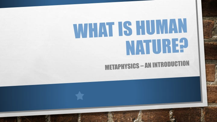 what is human nature n.