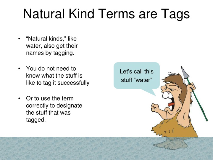 Natural Kind Terms are Tags
