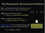 the phylogenetic reconstruction problem