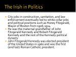 the irish in politics1