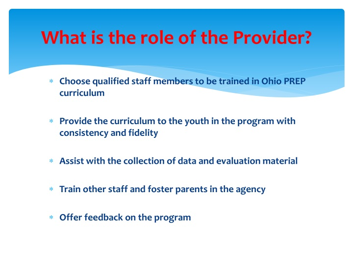 What is the role of the Provider?