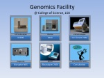 genomics facility @ college of science lsu