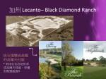 lecanto black diamond ranch