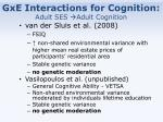 gxe interactions for cognition adult ses adult cognition