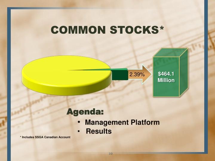 COMMON STOCKS*