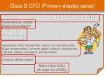 class b cfo primary display panel