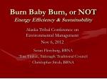burn baby burn or not energy efficiency sustainability