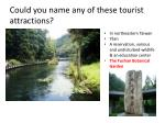 could you name any of these tourist attractions