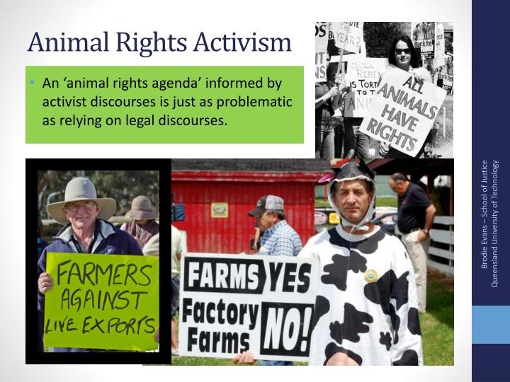 Animal Rights Activism