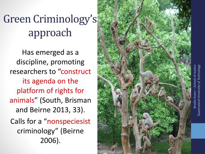 Green Criminology's approach