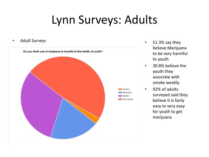 Lynn Surveys: Adults