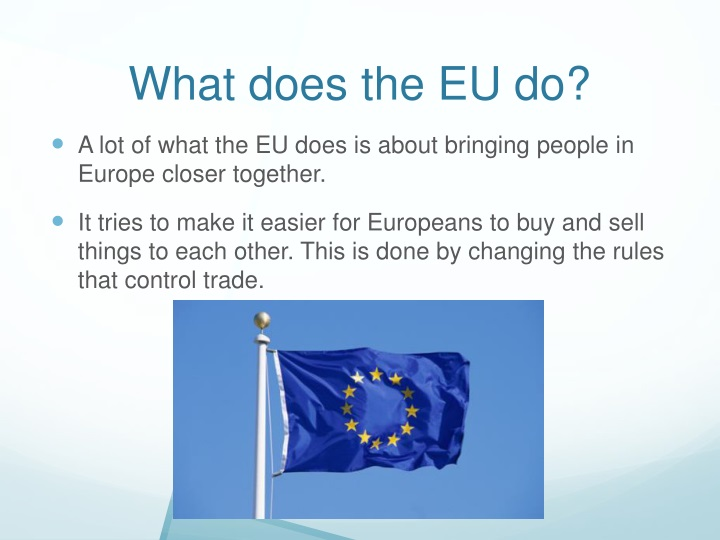 What does the EU do?