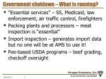 government shutdown what is running