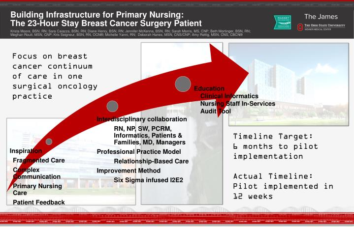 PPT - Building Infrastructure for Primary Nursing: The 23