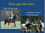 horse and rider train
