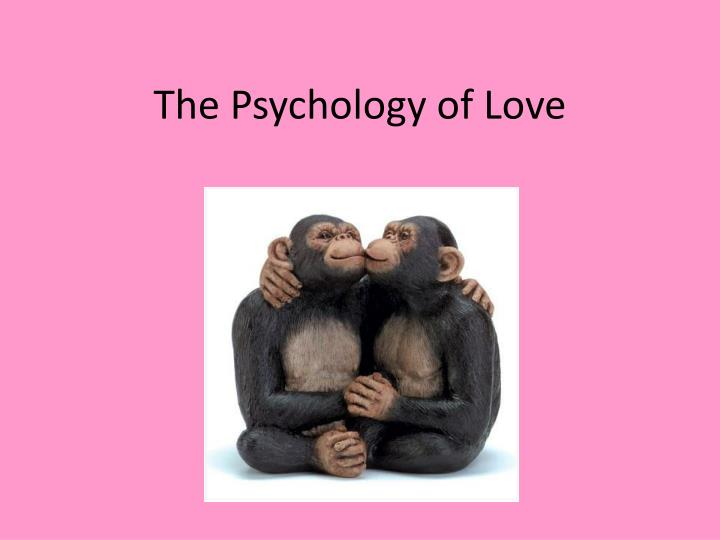 the psychology of love n.