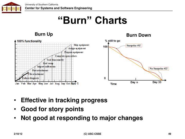 """""""Burn"""" Charts"""